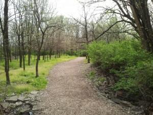 Trail-300x225